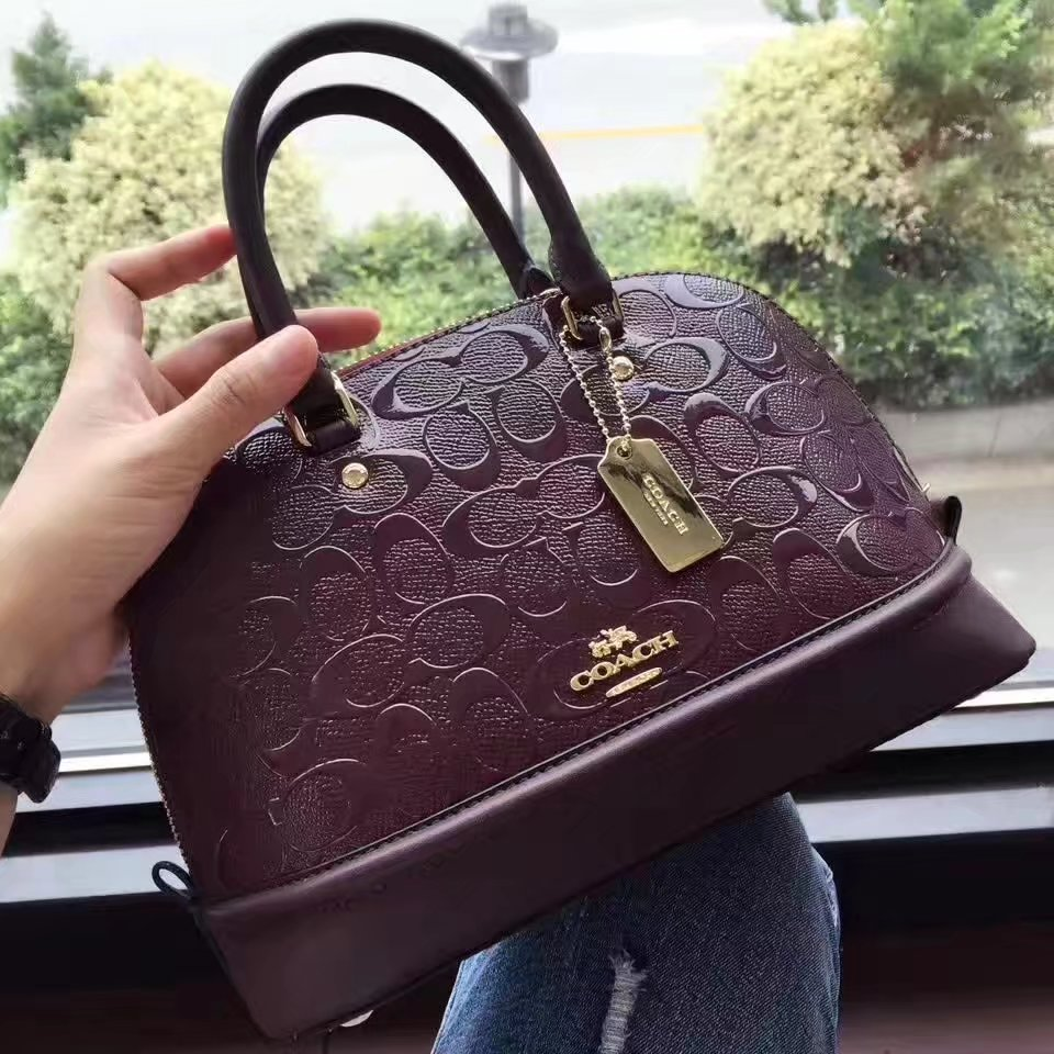 Coach 2017 Signature Leather Tote Bag Red