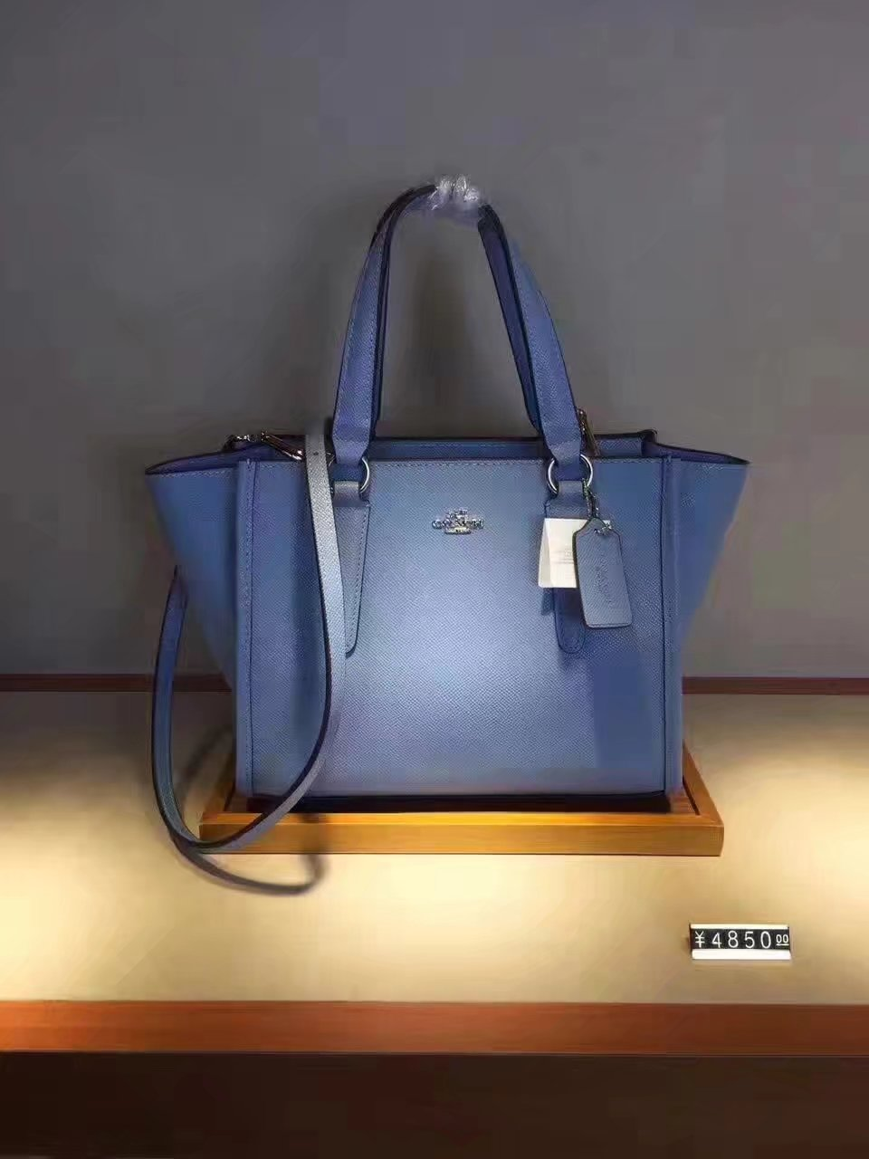 Coach 33537 Brookyln Carryall Tote Bag Light Blue