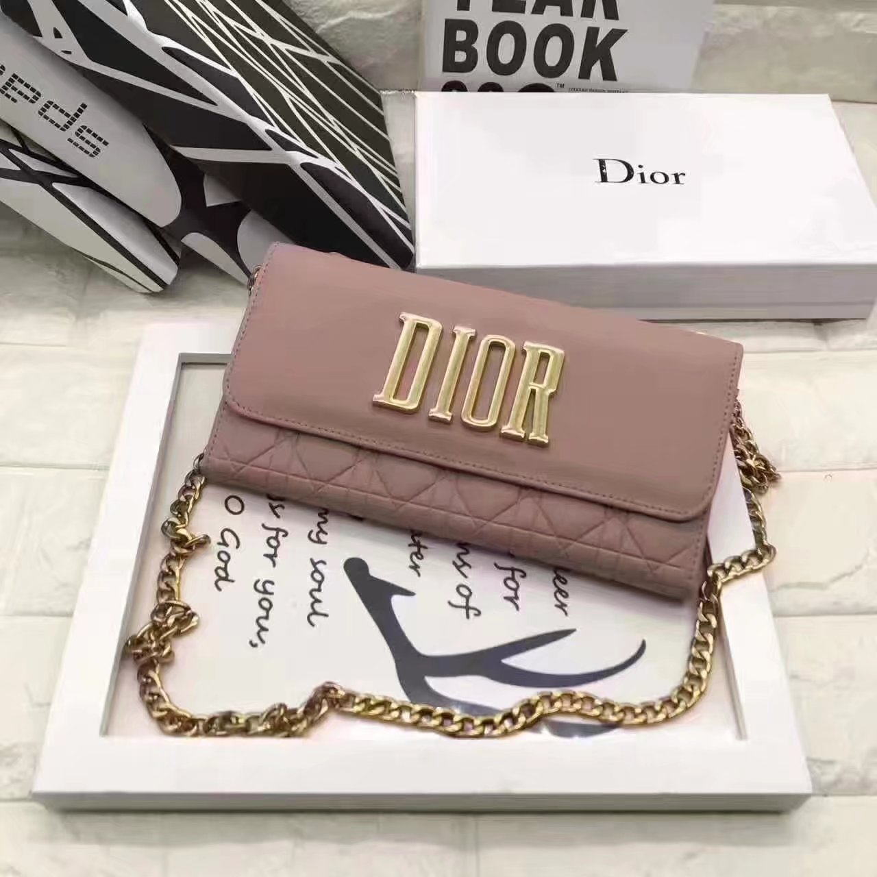 Dior Evolution Leather Flap Chain Bag Rose